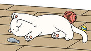 Begin image ID. An image of a white cat, Snow, in a Moment capture. End image ID.