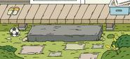 Yard background