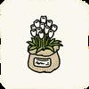 Garden Flowers WhiteTulips.png