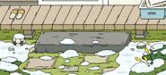 Yard background (snow)