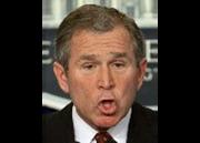 Funny bush face george w bush d d8e.png
