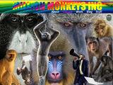 Million Monkeys Inc.