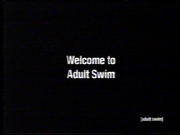 Welcome to Adult Swim (2003 bump).png