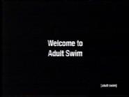 Welcome to Adult Swim (2003 bump)