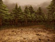 WoodsDusk
