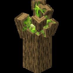 Tree Spirit.png