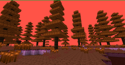 Chocolate Forest.png
