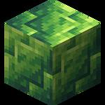 Block of Jade.png