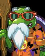 Turtle Hermit