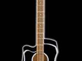 Voltaire's Guitar