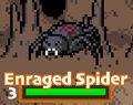 Spiderenr.jpg