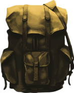 Feature backpack
