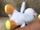 White Yoshi Baby