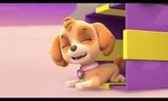 Skye- Pups Save Christmas- 1