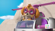 PAW Patrol Pups Save a Flying Kitty 26
