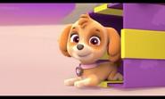 Skye- Pups Save Christmas- Arf, arf-arf, arf