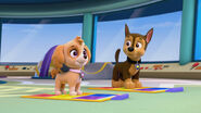 104-chase-and-skye-pup-pup-boogie-16x9