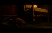 Screen Shot 2020-11-12 at 3.32.25 AM