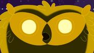 CosmicOwl42