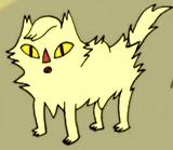 Lady Wizard 1 cat