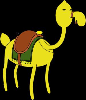 Лимонный верблюд