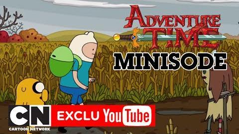Automne (3 5) Minisode Adventure Time Cartoon Network