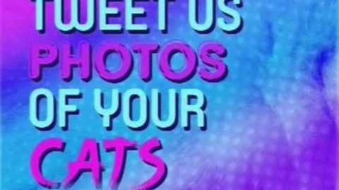 The '90s Are All CAT - September 2013 Promos