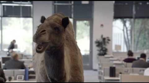 """Geico - Hump Day REMIX """"Guess What Day It Is"""" Camel (FINAL) Happier than a Camel on Wednesday"""