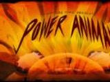 Energía Animal