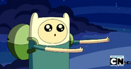 Finn, the person with the face1