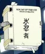 Iceninjamanual