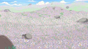 1000px-Marshmallowfield.jpg