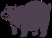 Teenage Bear.png