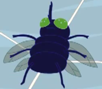 200px-Fly Web Weirdos.png