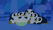 S5 e24 Penguins2
