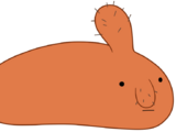 Морской жир
