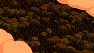 S7e1 long forest in the clouds