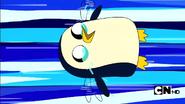 Gunter the flying penguin