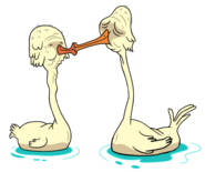 Old Swans