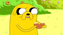 4 adventure time-(city of thieves; the witch's garden)-2010-06-11-0