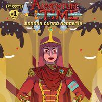Adventure Time Banana Guard Academy 1 D 2014 NM 9.6 Kyla Vanderklugt Variant