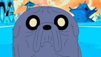 S10e10 Gray Jake wrinkled