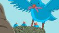 S6e10 Birds
