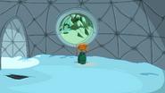 Lady & Peebles dome background