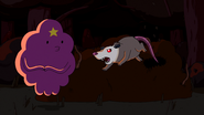 S6e9 Rabid Possum