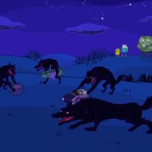 Why Wolves Adventure Time Wiki Fandom