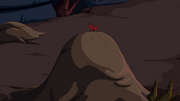 S7e32 Red ant on anthill.png