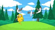 S2e13 Jake running past birds