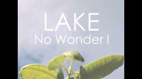 LAKE_-_No_Wonder_I