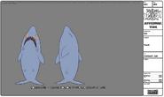 Modelsheet shark